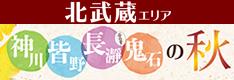 北武蔵観光局「神川・皆野・長瀞 ぷらす 鬼石の秋 2019」
