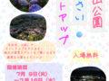 美の山公園あじさいライトアップ(最終)